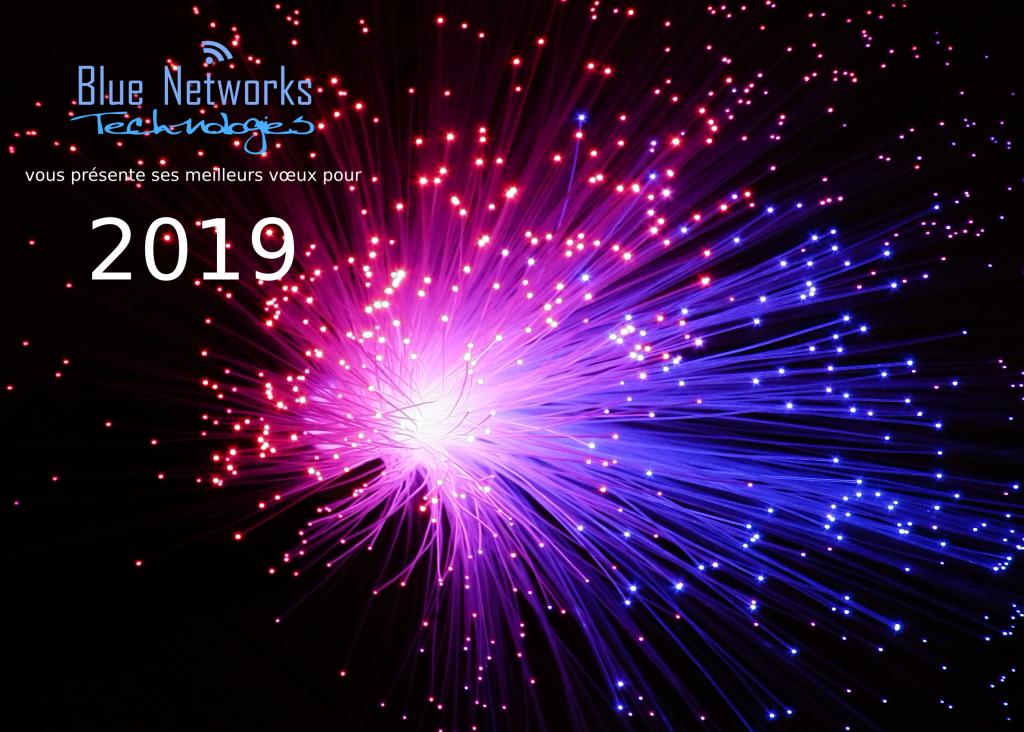 Blue Networks Technologies vous présente ses meilleurs vœux pour 2019
